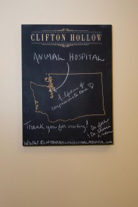 clifton hollow animal hospital (21)
